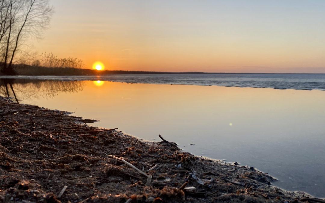 Субботник 24 апреля «Чистый берег»
